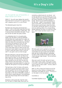 Page 37 - All Things Local - Issue 1