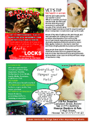 Page 9 - All Things Local - Issue 4