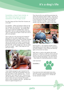 Page 25 - All Things Local - Issue 7