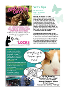 Page 28 - All Things Local - Issue 8